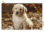 Golden Retriever Puppy Dog In Fallen Carry-all Pouch