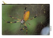 Golden Silk Spider 9  Carry-all Pouch