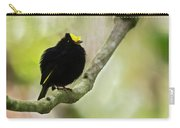Golden-winged Manakin Carry-all Pouch