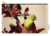 Goldfinch In Tree 031015a Carry-all Pouch