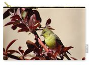 Goldfinch In Tree 031015aa Carry-all Pouch