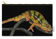 Good Night Chameleon Carry-all Pouch
