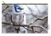 Gorgeous Blue Jay Carry-all Pouch
