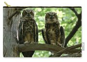 Gorgeous Great Horned Owls Carry-all Pouch