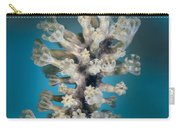 Gorgonian Carry-all Pouch