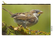Gorrion House Sparrow Carry-all Pouch