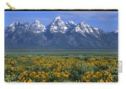 Grand Teton Summer Carry-all Pouch