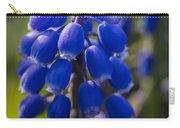 Grape Hyacinth Carry-all Pouch by Adam Romanowicz
