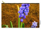Grape Hyacinth And Sandstone  Carry-all Pouch