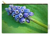 Grape Hyacinth Spike  Carry-all Pouch