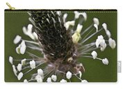 Grass Bloom Carry-all Pouch