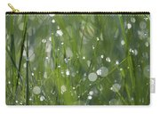 Grass Fairies... Carry-all Pouch