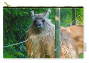 Grass Is Always Greener - Llama Carry-all Pouch by Jordan Blackstone
