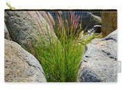 Grasses In Oasis On Borrego Palm Canyon Trail In Anza-borrego Desert Sp-ca Carry-all Pouch