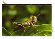 Grasshopper Macro Carry-all Pouch