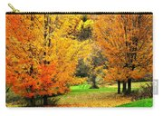 Grassy Autumn Road Carry-all Pouch