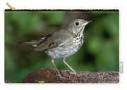 Gray-cheeked Thrush Catharus Minimus Carry-all Pouch