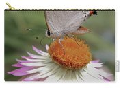 Gray Hairstreak And Straw Flower Carry-all Pouch