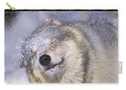 Gray Wolf Canis Lupus Shaking Snow Off Carry-all Pouch