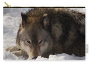 Gray Wolf In Snow Carry-all Pouch