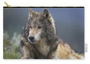 Gray Wolf Resting North America Carry-all Pouch