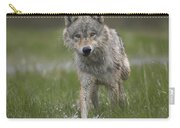 Gray Wolf Walking Through Water Carry-all Pouch