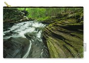 Waterfall - Grayville Everlasting Carry-all Pouch
