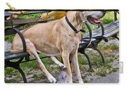 Great Dane Sitting On Park Bench Carry-all Pouch