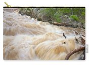 Great Falls White Water #3 Carry-all Pouch