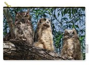 Great Horned Owl Family Carry-all Pouch