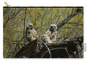 Great Horned Owlets 1 Carry-all Pouch