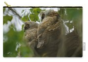 Great Horned Owlets 5 20 2011 Carry-all Pouch