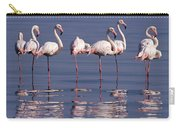 Greater Flamingo Group Carry-all Pouch