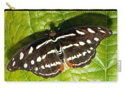 Grecian Shoemaker Butterfly Carry-all Pouch