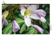 Greek Valerian 1 Carry-all Pouch