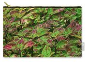 Green And Purple In Nature Carry-all Pouch