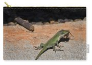 Green Anole Lizard Vs Wolf Spider  Carry-all Pouch