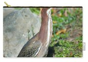 Green-backed Heron Butorides Virescens Carry-all Pouch