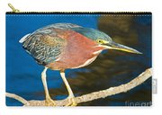 Green-backed Heron Carry-all Pouch
