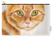 Green Eyed Tabby Cat Carry-all Pouch