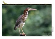 Green Heron 2 Carry-all Pouch