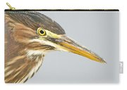 Green Heron Close-up Carry-all Pouch