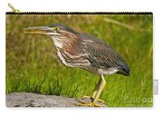 Green Heron Pictures 449 Carry-all Pouch
