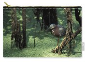 Green Heron Carry-all Pouch by Steven Ralser