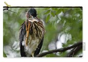 Green Heron Waves Hello Carry-all Pouch