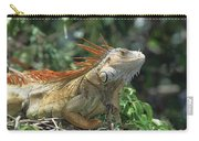 Green Iguana Male Portrait Central Carry-all Pouch
