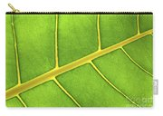 Green Leaf Close Up Carry-all Pouch by Elena Elisseeva