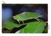 Green Leaf-mimic Katydid Steirodon Carry-all Pouch