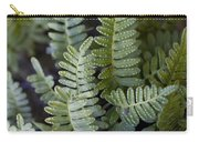 Green Resurrection Fern Air Plant Carry-all Pouch