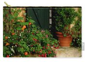 Green Shuttered Window Carry-all Pouch by Lainie Wrightson